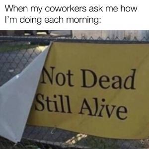 When my coworkers ask me how I'm doing each morning: