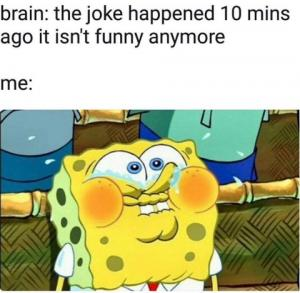 Brain: The joke happened 10 mins ago it isn't funny anymore<div><br></div><div>Me:</div>